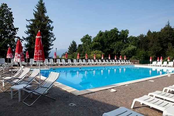 Ca. 25 m x 12 m großer Pool