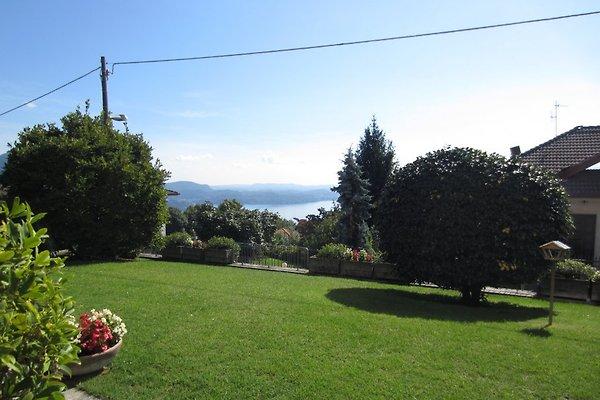 Ca. 300 m² großer Gemeinschaftsgarten mit wunderschöner Panoramasicht auf den See