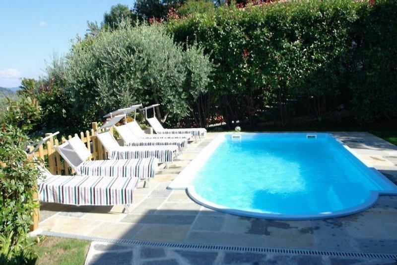 Ca. 8 x 4,5 m großer Pool