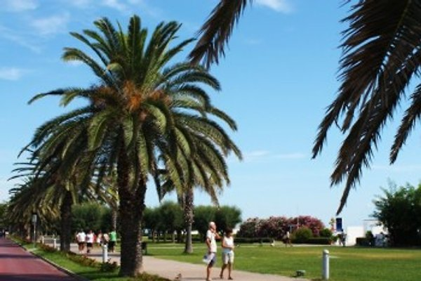 Porto Sant'Elpidio en Porto Sant'Elpidio - imágen 1