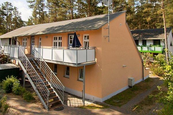 Ferienwohnung direkt am Strand en Karlshagen - imágen 1