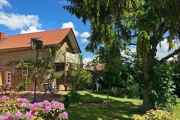 kleines Ferienhaus am See en Oberuckersee - imágen 1