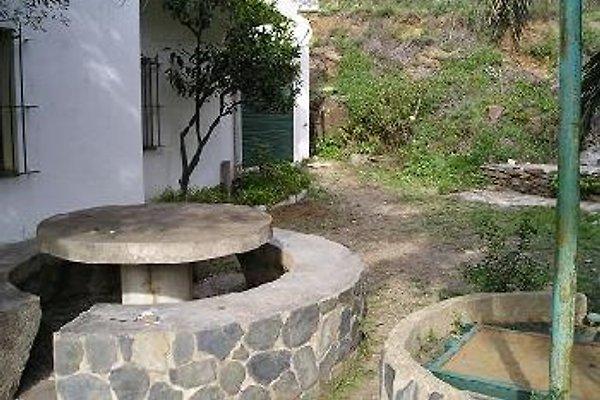 costa brava insid natural park in Cadaques - Bild 1
