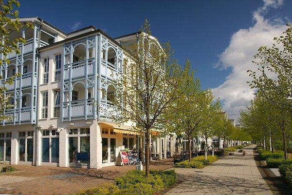 Seepark Sellin Wohnung 373 à Sellin - Image 1