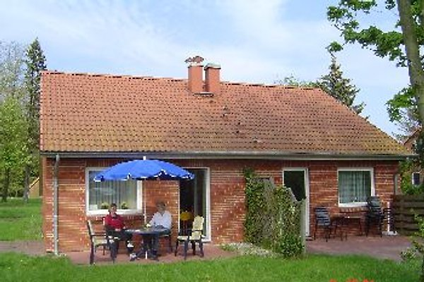 Doppelhaushälfte in Boltenhagen - immagine 1
