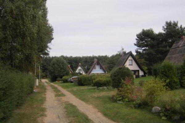 Finnhütte am Peenestrom à Quilitz - Image 1