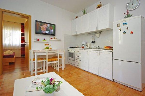Apartamento Mare en Zaostrog -  1
