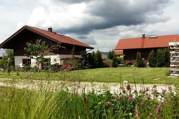 Forsthaus Chalet - Natur & SPA in Teisnach - immagine 1