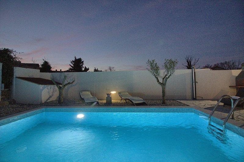 Villa Michelle mit pool in Šišan - wiibuk.com