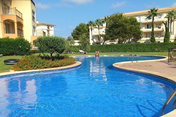 Apartment Al Mar in Sa Coma - immagine 1