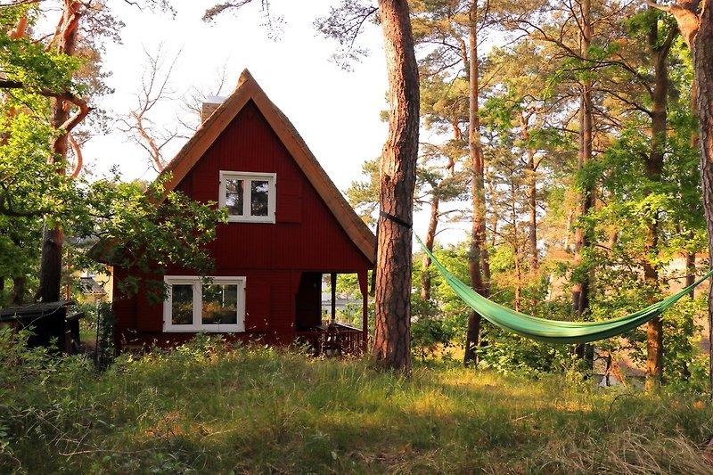 Ferienhaus auf idyllischem Waldgrundstück