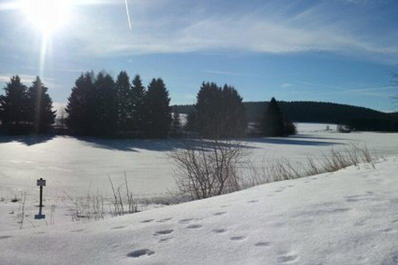 Und so schaut´s hier im Winter aus...