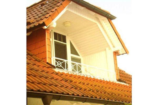 Balkon mit Südausrichtung