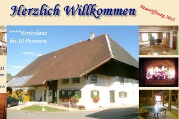 Herzlich Willkommen im Ferienhaus Dilgerhof