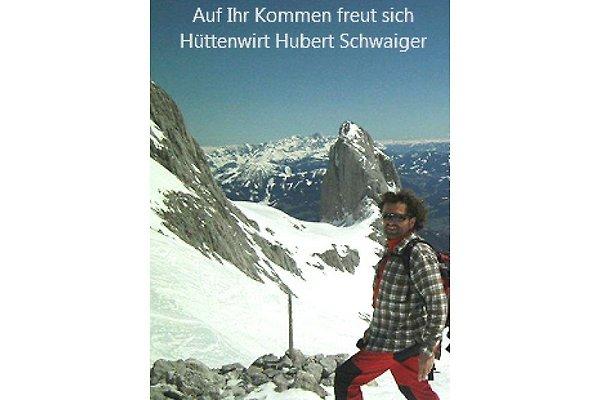 Herr H. Schwaiger
