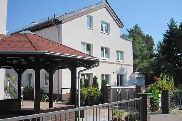Ah ;-) Schumis Ferienwohnung à Brandenburg an der Havel - Image 1