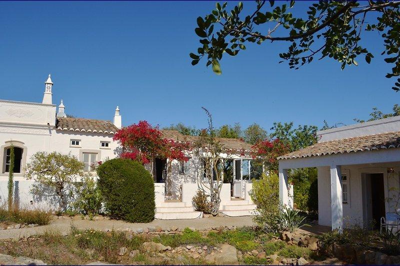 Villa Antiga