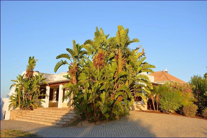 Casa Monte Cabeça