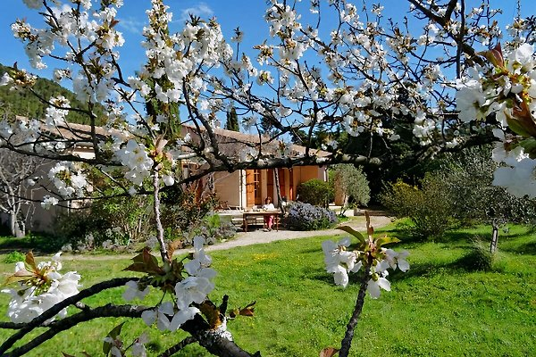Villa BB Provenza, Vaucluse en Beaumes de Venise - imágen 1