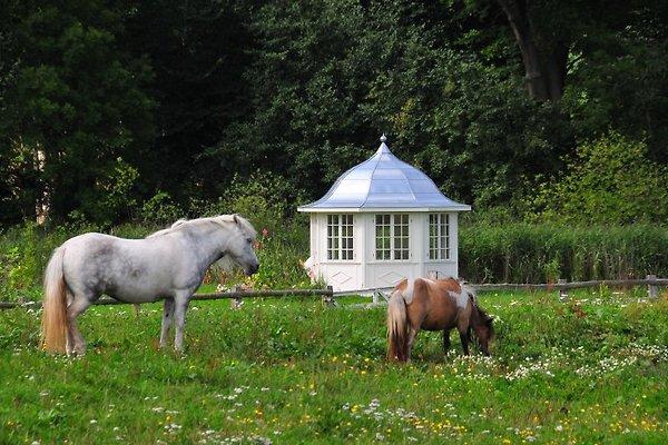 Teepavillon am Park