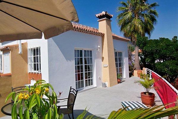 Casa Delmara à Los Llanos de Aridane - Image 1