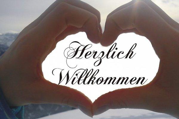 Frau A. Höcker