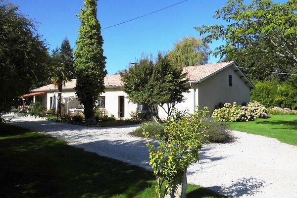Maison Bambous en Lesparre-Médoc -  1