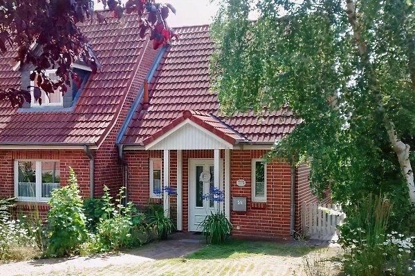 Ferienhaus Willert BUTEN à Sierksdorf - Image 1