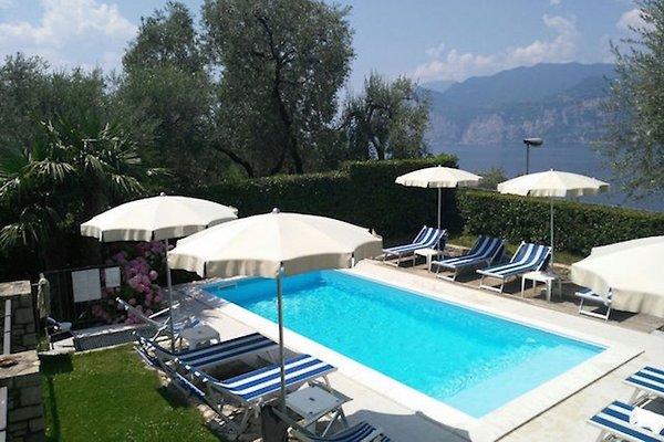 Villa Gaia Malcesine con piscina wifi en Malcesine -  1