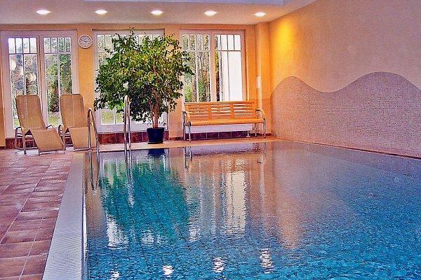 Hauseigenes Schwimmbad im Wellnessbereich (gratis!)
