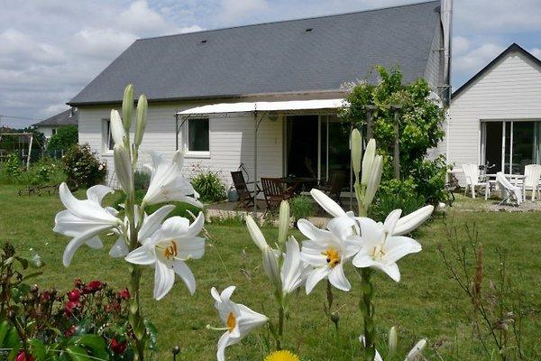 Gîte und Studio von der Südseite