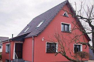 Domek letniskowy Ferienhaus am Schlosspark