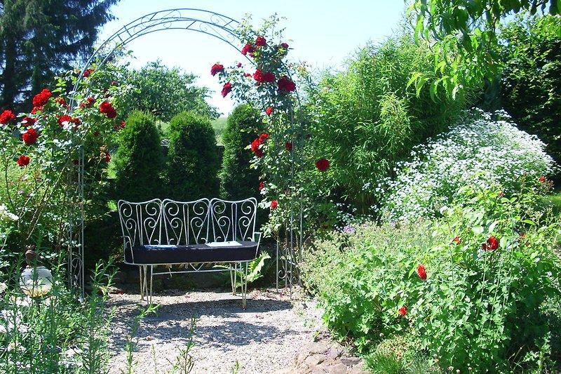das kleine Rosenparadies