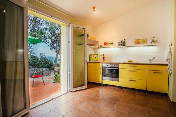 Küchenbereich mit Blick auf die Terrasse