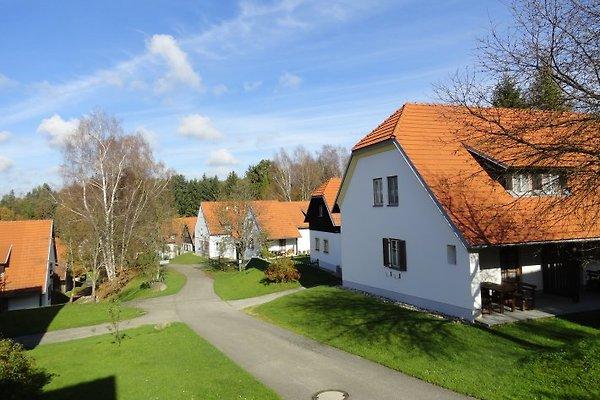 Ferienhaus am Park in Litschau - Bild 1