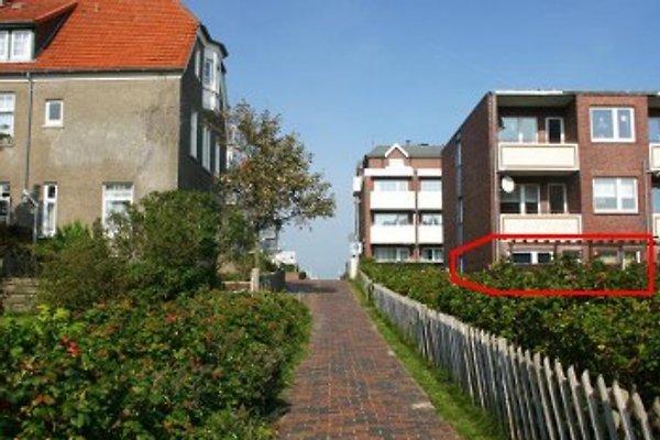 Stoertebeker-Haus und Wohnung vom Damenpfad aus gesehen