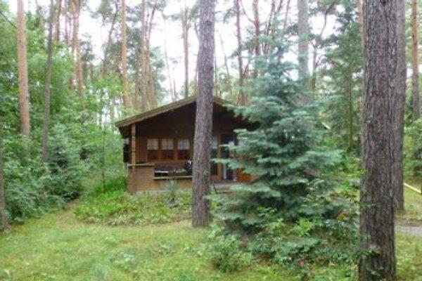 Das kleinere Blockhaus im hinteren Teil des Grundstücks