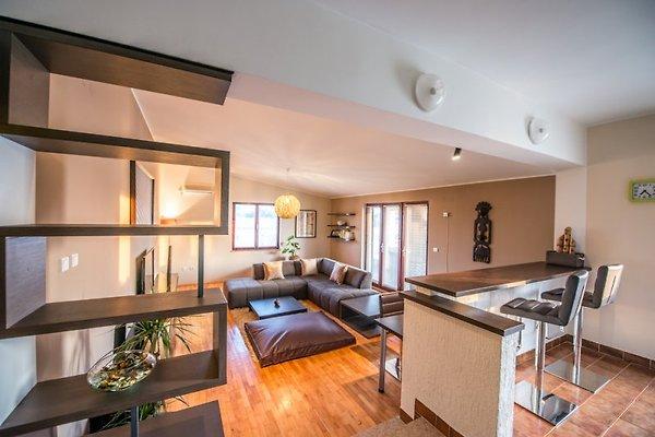 appartamenti Roberto in Banjole - immagine 1