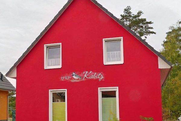 Haus Kiebitz