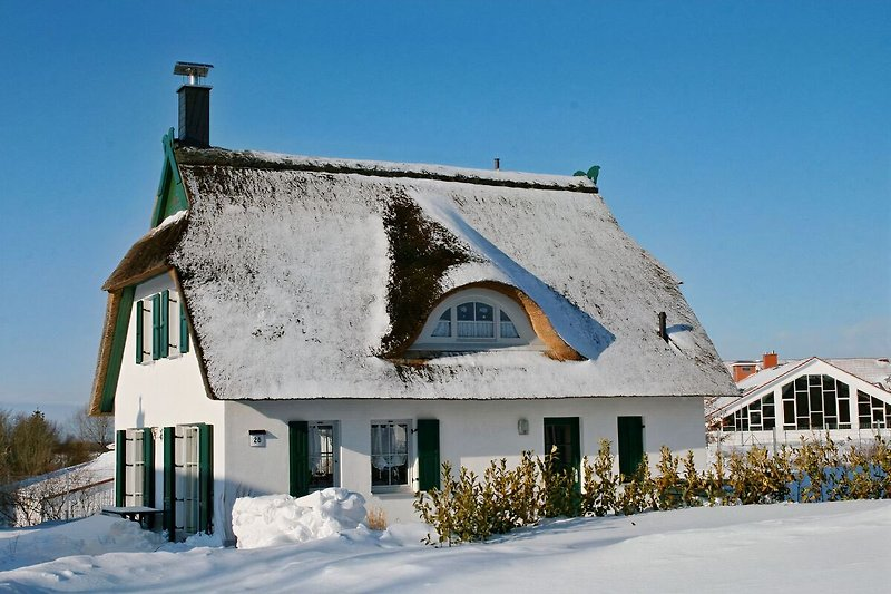 Haus Albatros, Winter