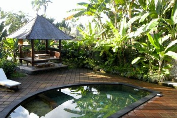 Mari Guesthouse en Ubud - imágen 1