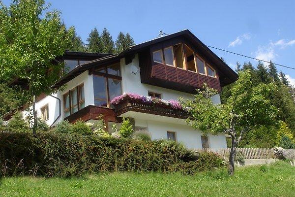 Ferienhaus Waldhof