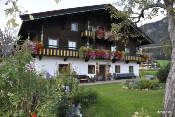 Mussbachhof à Saalfelden - Image 1