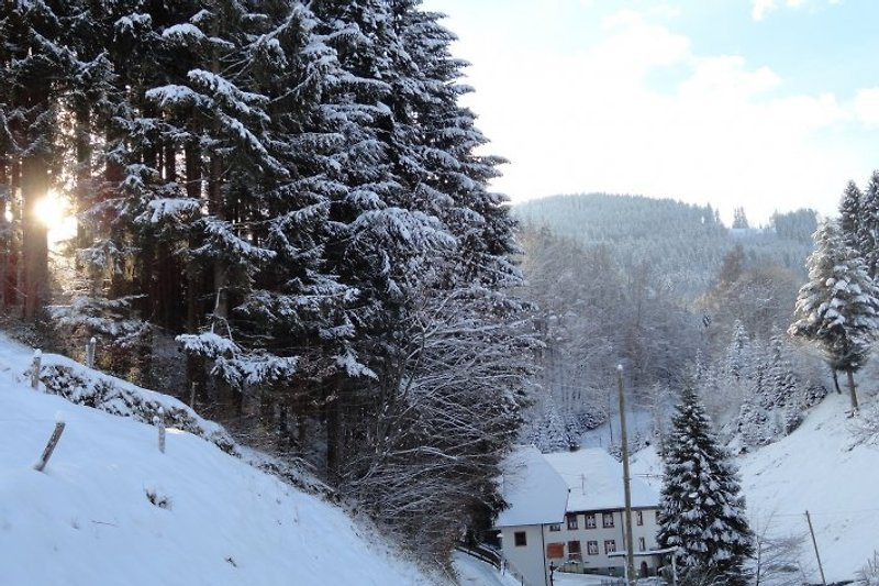 Winter in der Steinmühle