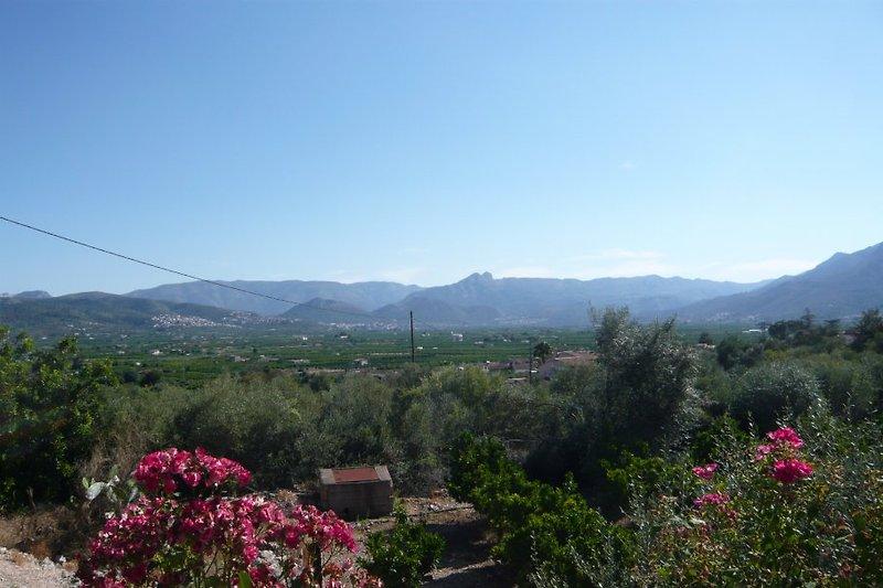 wunderschöner Panoramablick