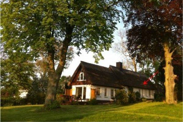 Haus am See en Klein Upahl -  1