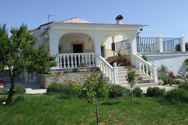 Valencia Villa in Montroy - immagine 1