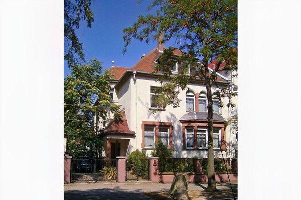 Villa Mayer - Apartment I à Speyer - Image 1