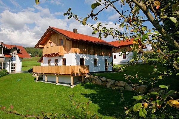 Holzchalet Tom`s Hütte  in Bodenmais - immagine 1