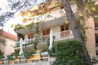 Appartements und Zimmer in ruhiger Umgebung, von dichtem Pinienwald umgeben, wenige Meter über ein paar Treppen zum Feinkiesstrand.